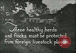 Image of foot and mouth disease United States USA, 1925, second 9 stock footage video 65675022112