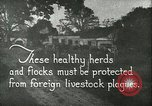 Image of foot and mouth disease United States USA, 1925, second 11 stock footage video 65675022112