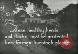 Image of foot and mouth disease United States USA, 1925, second 12 stock footage video 65675022112