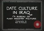 Image of Date Culture in Iraq Mesopotamia Iraq, 1929, second 12 stock footage video 65675022173