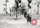 Image of Sergeant Collins' team advances United States USA, 1965, second 1 stock footage video 65675022234