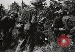 Image of Rifle Squad members United States USA, 1965, second 9 stock footage video 65675022239