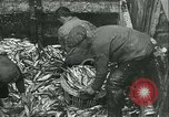 Image of Herring and Bloater fishes United Kingdom, 1934, second 7 stock footage video 65675022441