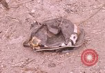 Image of War wreckage Saigon Vietnam, 1968, second 6 stock footage video 65675022564