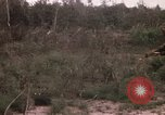 Image of United States 50th Infantry Vietnam, 1967, second 12 stock footage video 65675022581