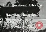 Image of Hawaiian pineapple workers resting Hawaii USA, 1916, second 6 stock footage video 65675022621