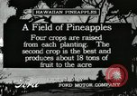 Image of Pineapple harvested Hawaii USA, 1916, second 4 stock footage video 65675022622