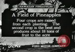 Image of Pineapple harvested Hawaii USA, 1916, second 7 stock footage video 65675022622