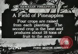 Image of Pineapple harvested Hawaii USA, 1916, second 10 stock footage video 65675022622