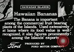 Image of Banana plantation Hawaii USA, 1916, second 1 stock footage video 65675022624