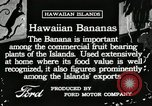 Image of Banana plantation Hawaii USA, 1916, second 2 stock footage video 65675022624