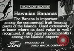 Image of Banana plantation Hawaii USA, 1916, second 3 stock footage video 65675022624