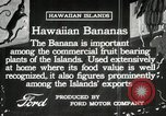 Image of Banana plantation Hawaii USA, 1916, second 5 stock footage video 65675022624
