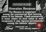 Image of Banana plantation Hawaii USA, 1916, second 7 stock footage video 65675022624