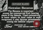 Image of Banana plantation Hawaii USA, 1916, second 10 stock footage video 65675022624