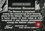 Image of Banana plantation Hawaii USA, 1916, second 11 stock footage video 65675022624