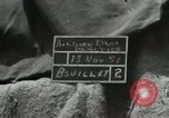 Image of 187th Airborne Regimental Combat Team Korea, 1951, second 8 stock footage video 65675022689