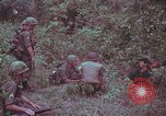 Image of 1st Battalion of 173rd Airborne Brigade Vietnam, 1965, second 6 stock footage video 65675022714