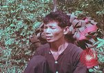Image of 1st Battalion of 173rd Airborne Brigade Vietnam, 1965, second 10 stock footage video 65675022714