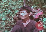 Image of 1st Battalion of 173rd Airborne Brigade Vietnam, 1965, second 11 stock footage video 65675022714
