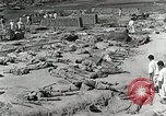 Image of Dead bodies of South Koreans Taegu Korea, 1950, second 10 stock footage video 65675022718