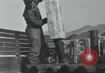 Image of 187th Regimental Combat Team Korea, 1950, second 11 stock footage video 65675022728
