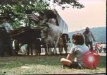 Image of United States 200th Anniversary Valley Forge Pennsylvania, 1976, second 5 stock footage video 65675022743