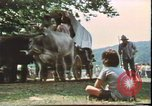 Image of United States 200th Anniversary Valley Forge Pennsylvania, 1976, second 6 stock footage video 65675022743