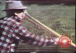 Image of Birch tree Canoe United States USA, 1975, second 12 stock footage video 65675022754