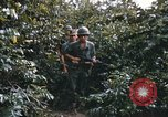 Image of 25th Infantry Division soldiers Vietnam Cu Chi, 1967, second 8 stock footage video 65675022783
