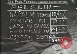 Image of 1st Marine Division Peleliu Palau Islands, 1944, second 12 stock footage video 65675022842