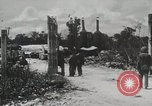 Image of 1st Marine Division Peleliu Palau Islands, 1944, second 11 stock footage video 65675022849