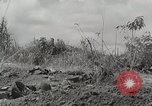Image of U.S. Army 81st Infantry Division  Palau Islands, 1945, second 6 stock footage video 65675022854