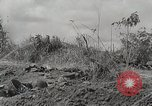 Image of U.S. Army 81st Infantry Division  Palau Islands, 1945, second 7 stock footage video 65675022854
