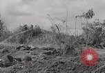 Image of U.S. Army 81st Infantry Division  Palau Islands, 1945, second 8 stock footage video 65675022854