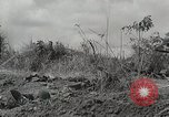 Image of U.S. Army 81st Infantry Division  Palau Islands, 1945, second 9 stock footage video 65675022854