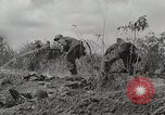 Image of U.S. Army 81st Infantry Division  Palau Islands, 1945, second 11 stock footage video 65675022854