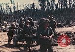 Image of 5th Marine Regiment Peleliu Palau Islands, 1944, second 10 stock footage video 65675022866