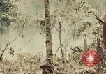 Image of 5th Marine Regiment Peleliu Palau Islands, 1944, second 2 stock footage video 65675022868