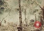Image of 5th Marine Regiment Peleliu Palau Islands, 1944, second 3 stock footage video 65675022868