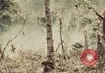 Image of 5th Marine Regiment Peleliu Palau Islands, 1944, second 4 stock footage video 65675022868