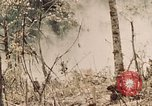 Image of 5th Marine Regiment Peleliu Palau Islands, 1944, second 12 stock footage video 65675022868