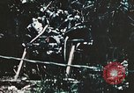 Image of 1st Marine Division Peleliu Palau Islands, 1944, second 7 stock footage video 65675022871