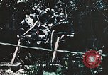 Image of 1st Marine Division Peleliu Palau Islands, 1944, second 9 stock footage video 65675022871