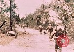 Image of 7th Marine Regiment Peleliu Palau Islands, 1944, second 7 stock footage video 65675022872
