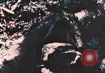 Image of 7th Marine Regiment Peleliu Palau Islands, 1944, second 5 stock footage video 65675022873