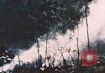 Image of 7th Marine Regiment Peleliu Palau Islands, 1944, second 10 stock footage video 65675022873
