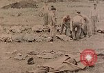 Image of Burial of fallen Marines Palau Islands, 1944, second 2 stock footage video 65675022884
