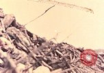 Image of 1st Marine Division Peleliu Palau Islands, 1944, second 2 stock footage video 65675022898