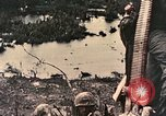 Image of 1st Marine Division Peleliu Palau Islands, 1944, second 12 stock footage video 65675022898